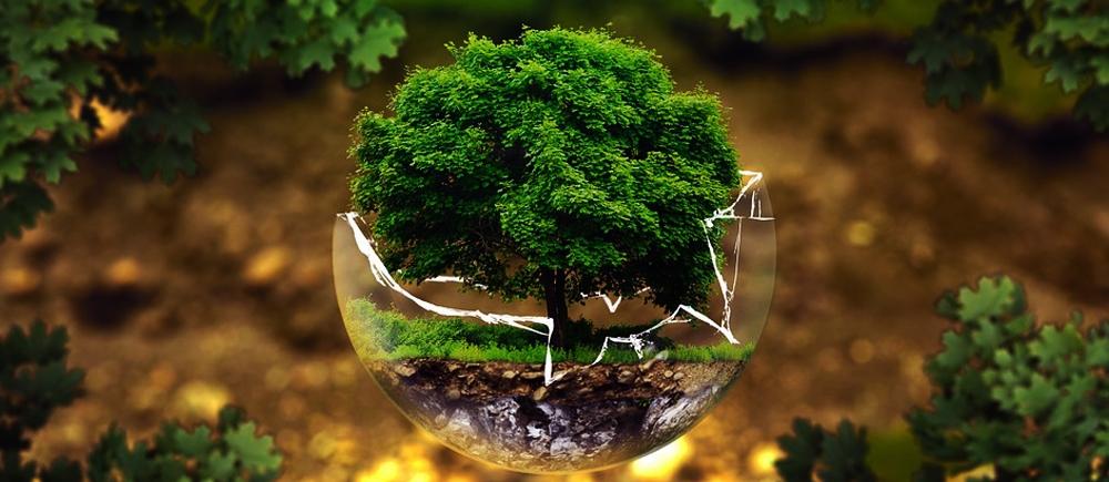 Стихия Земли